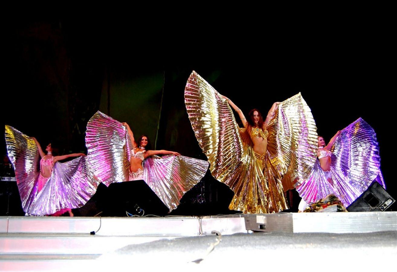 Что нужно знать о крыльях для танца живота! 41